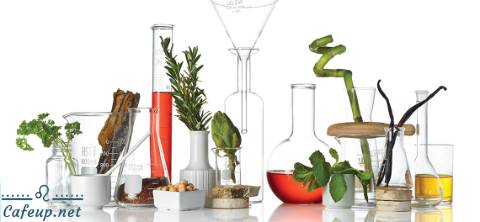 Beauty trends: Cosmetics derived from nature