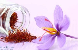 Saffron combined with rose water and coconut oil