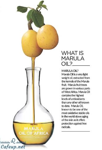 Marula oil packed with natural benefits